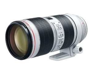 Best Zoom Lens For Canon