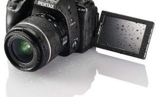 Best Starter Cameras For Photography